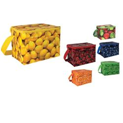 PhotoGraFX™ 6-Pack Coolers
