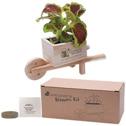 Custom Wheel Barrow Blossom Kit