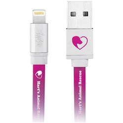 Toddy Promotional Lightning Cable and Charger