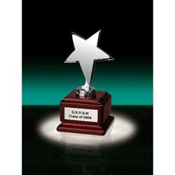 Stella 1 Star on Square Wood Crystal Awards