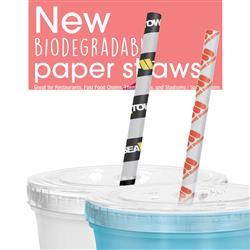 Custom Paper Straws in Bulk